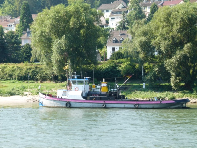 Shipping on the Rhine & Danube P1000915