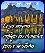 Bariloche- Argentina Oie_hk10