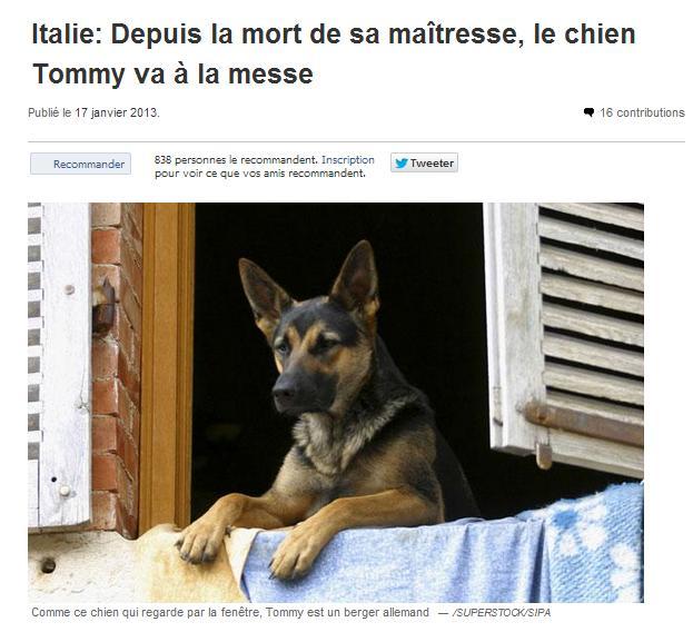 Les NEWS INSOLITES Insoli12