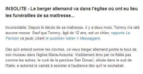 Les NEWS INSOLITES Insoli13