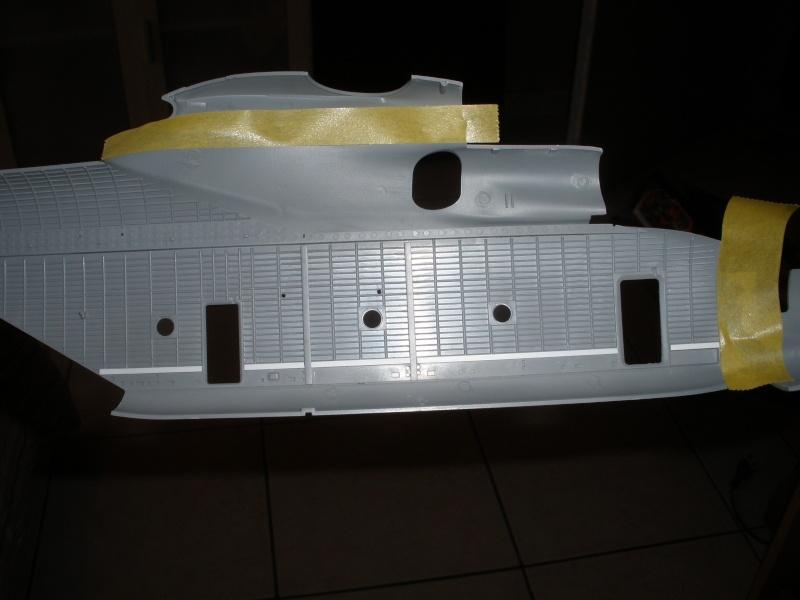 Une Baleine dans les Airs!!! P2180111