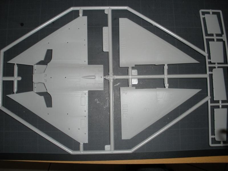 Revue de kit Mirage 2000-C Kinetic 1/48. P4210221
