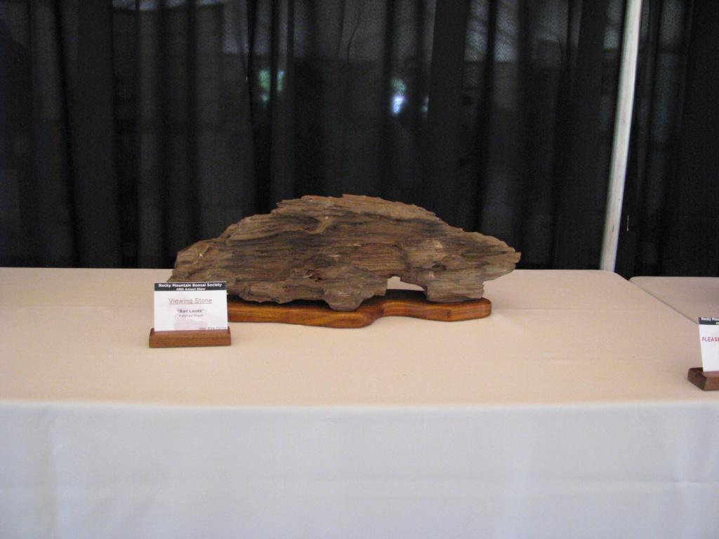 Arizona Petrified Wood Suiseki – Viewing Stone Img_3410