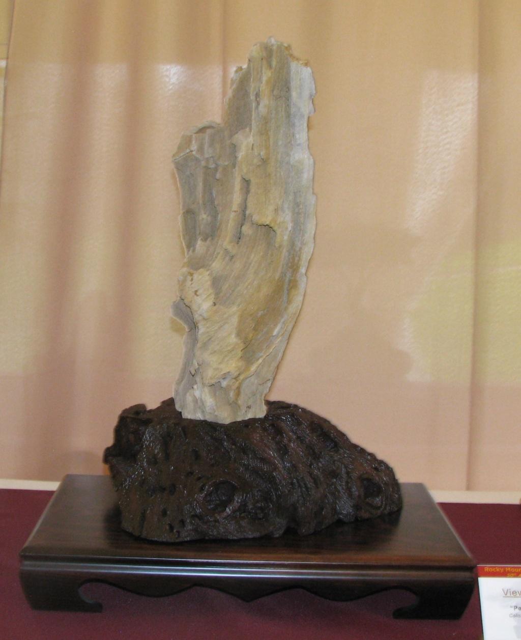 Arizona Petrified Wood Suiseki – Viewing Stone Img_5410