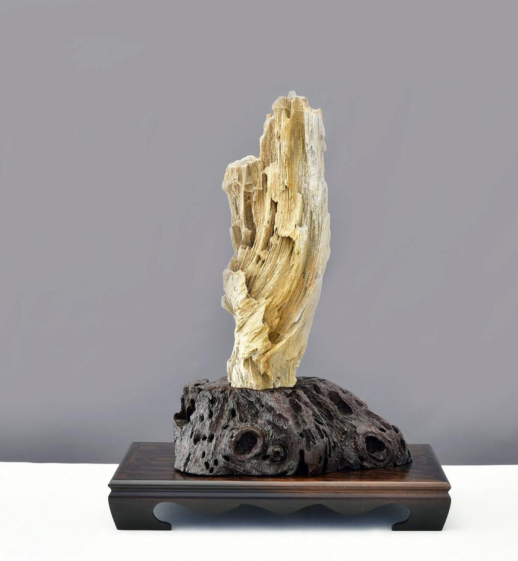 Arizona Petrified Wood Suiseki – Viewing Stone Mh410