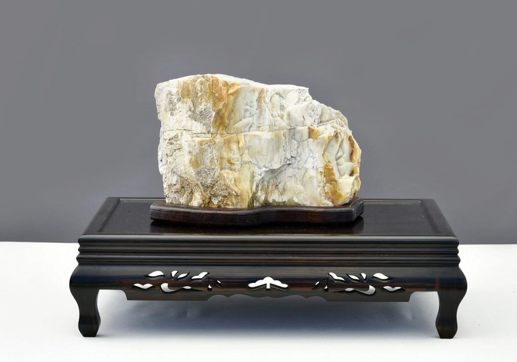 Arizona Petrified Wood Suiseki – Viewing Stone Mh510