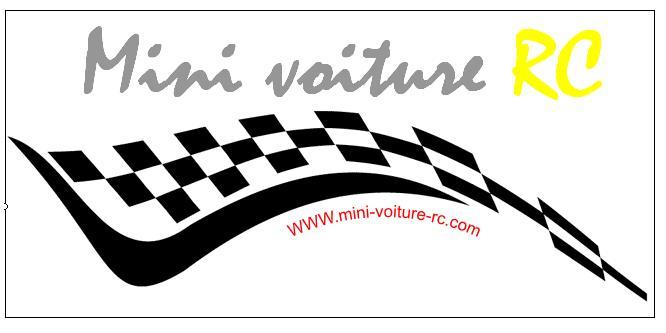 Vote concours de Logo Mini-Voiture-RC Projet10