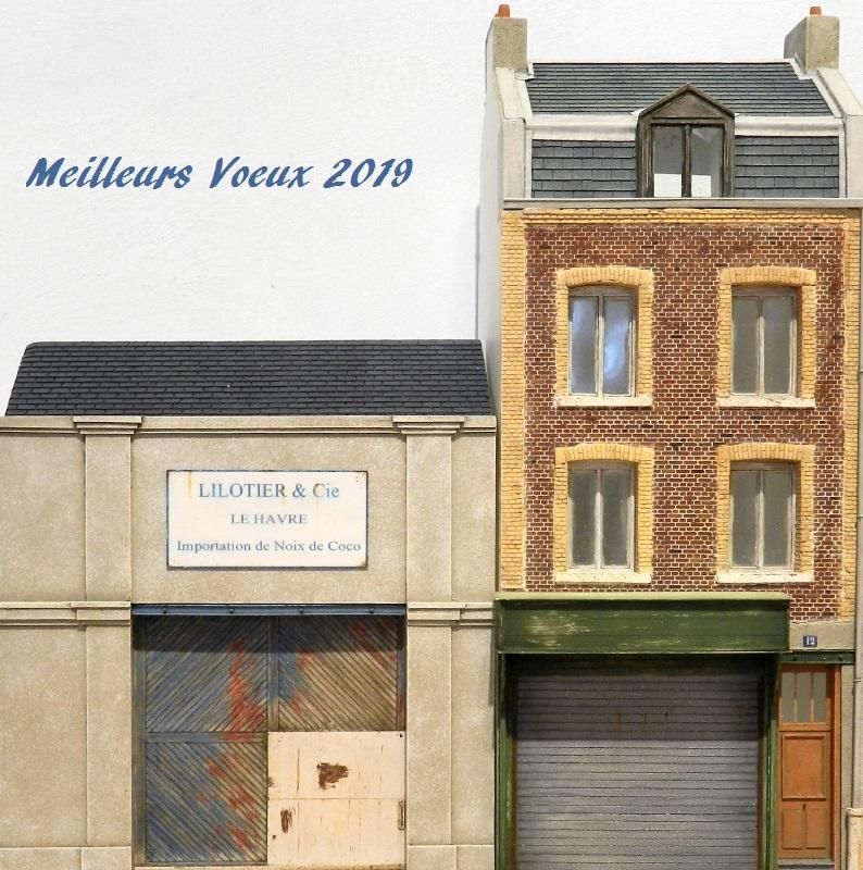 Meillleurs voeux 2019 Fscn9410
