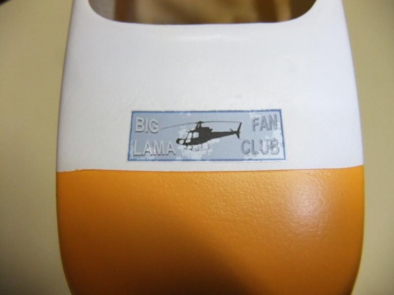 2ème Blade 450X  en AS350 - Page 2 Dscf2642
