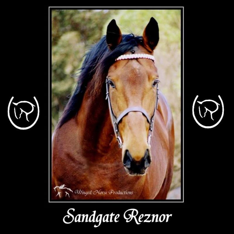 Sandgate Reznor - Frozen Semen Only Sandga10