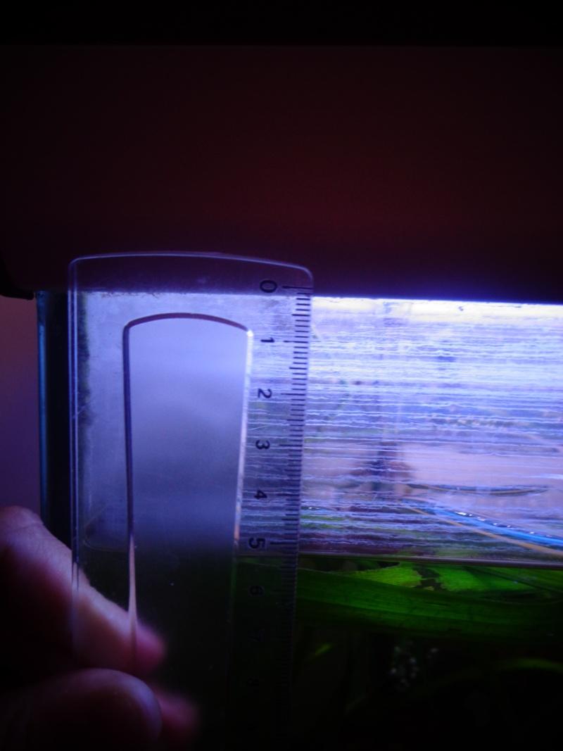 Problème de fuite sur filtre externe bioactive 250 SERA Dsc00410