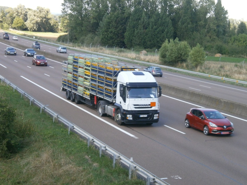 Iveco Stralis  - Page 7 P8161119