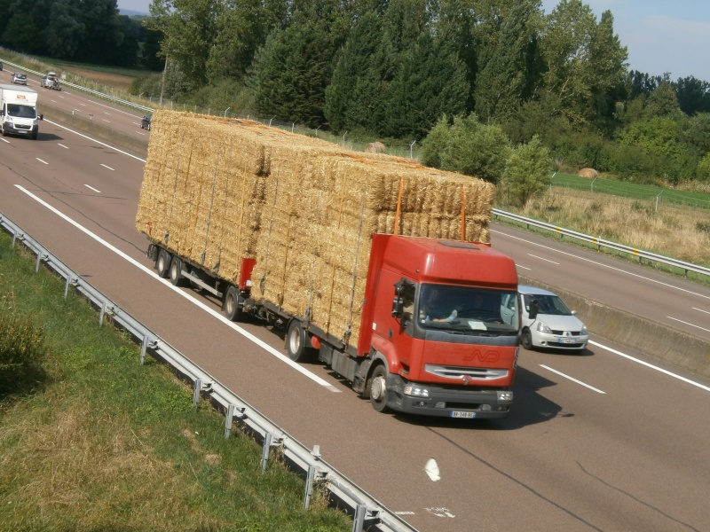 Transports de paille - Page 2 P8161146