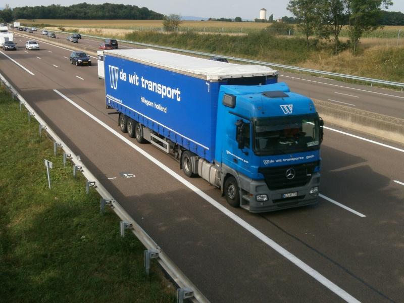 De Wit Transport (Hillegom) P8231441