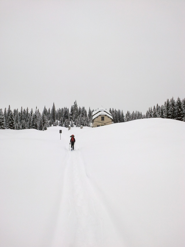 Raid invernale al bivacco Campilussi – Altopiano di Asiago 23022010