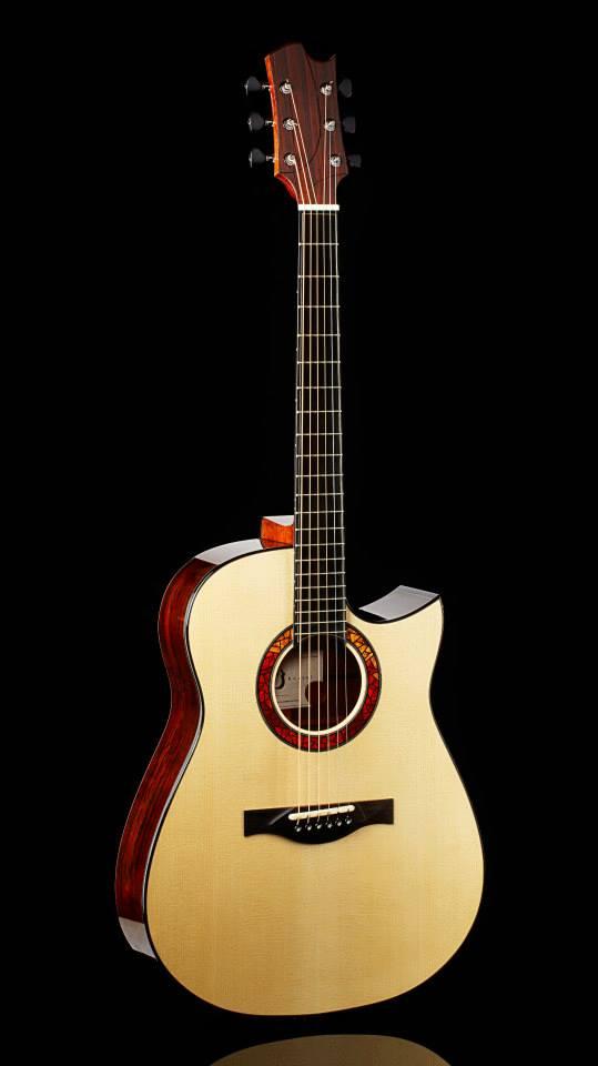 Vos spécifications pour une guitare de luthier - Page 5 53957611