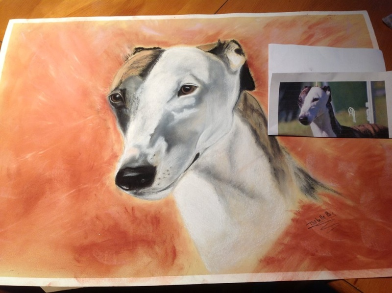 peinture Pastel  10007010