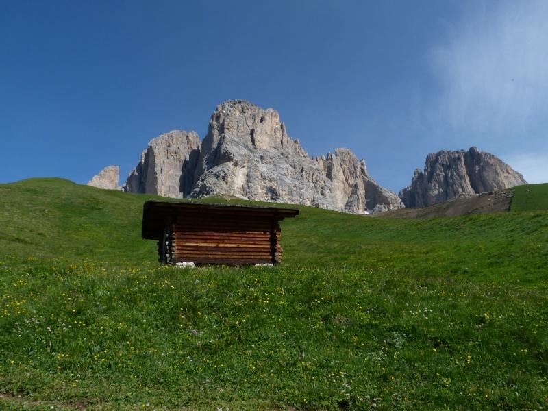 Du 13 au 19 juillet dans le Val di Fassa P1490813