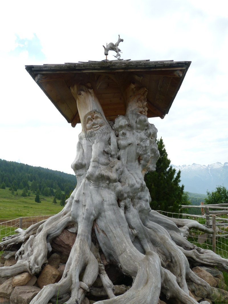 Du 13 au 19 juillet dans le Val di Fassa - Page 2 P1510212
