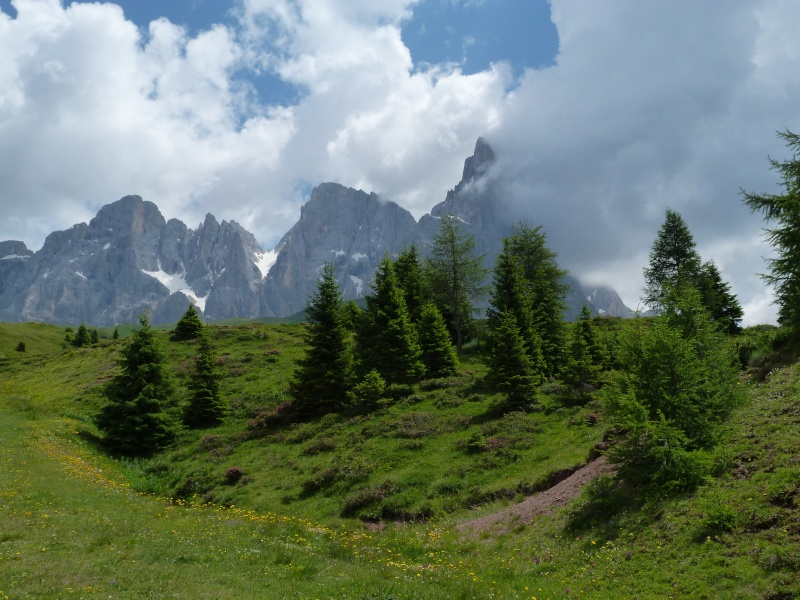Du 13 au 19 juillet dans le Val di Fassa - Page 2 P1520210