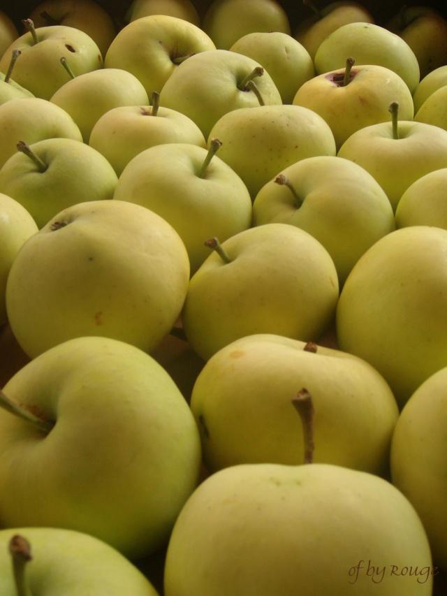 Was für Obstsorten habt Ihr denn im Garten? Aussaat, Spalier, Beerensträucher, Erfahrung und Hilfe :) - Seite 16 Kornzi10