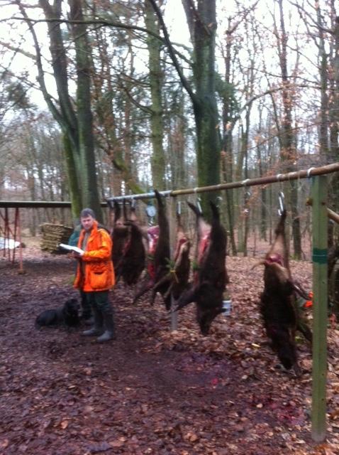 Saison de chasse au Grand Gibier 2012/2013 - Page 4 Onf10