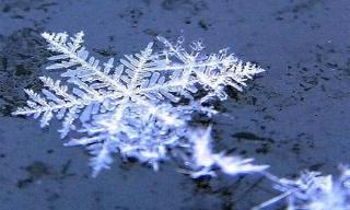 Le bruit de la neige Fiocco10