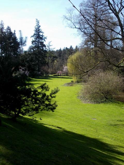 le parc oriental de maulévrier au printemps  Dscn7025