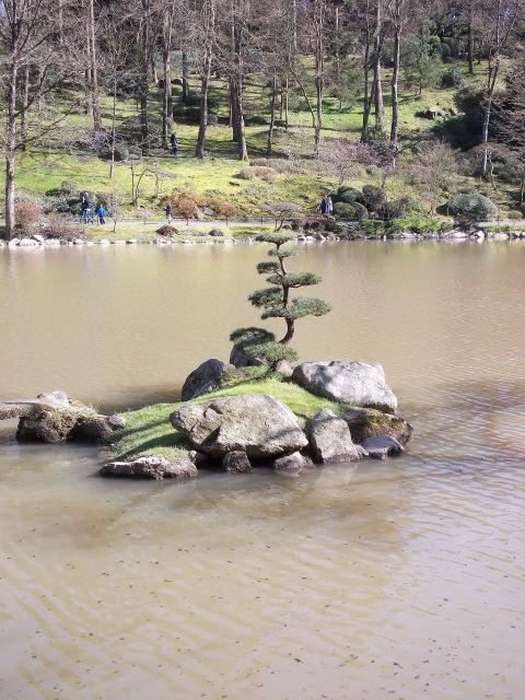 le parc oriental de maulévrier au printemps  Dscn7036