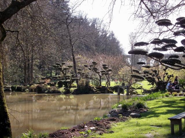le parc oriental de maulévrier au printemps  Dscn7037