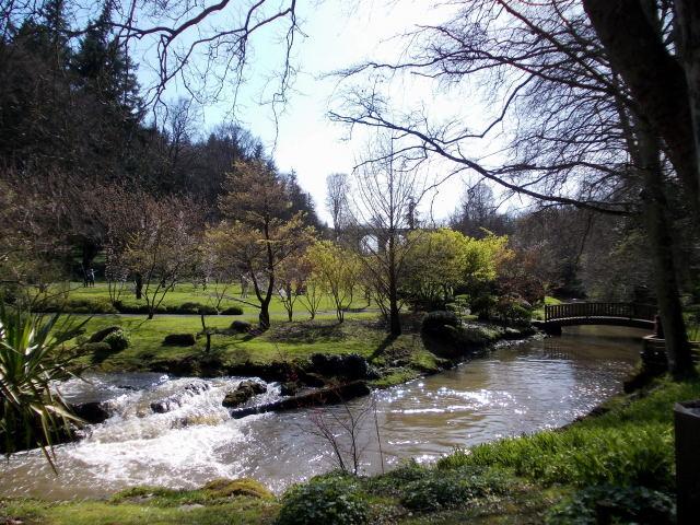 le parc oriental de maulévrier au printemps  Dscn7038