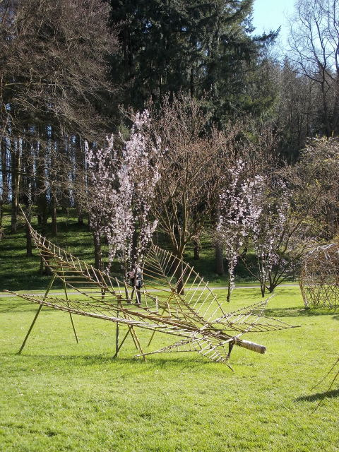 le parc oriental de maulévrier au printemps  Dscn7110
