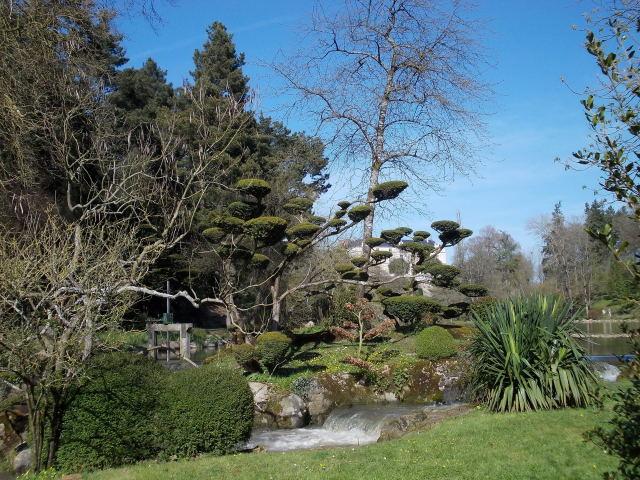 le parc oriental de maulévrier au printemps  Dscn7111