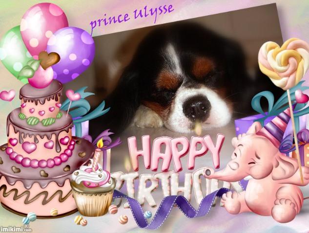 Bon anniversaire Prince Ulysse !  Y3mo-113