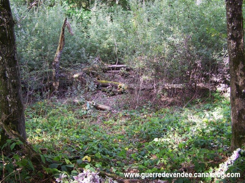 Les Fosses-Cady, à Beaulieu-sur-Layon (49) Fosses13