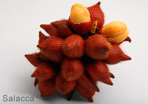 thai - Fruit Thai: Le goût exotique d'un paradis tropical Thai-f18