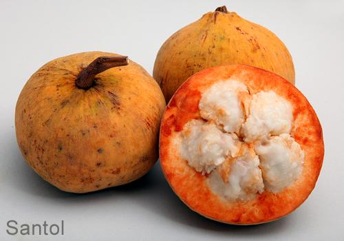 thai - Fruit Thai: Le goût exotique d'un paradis tropical Thai-f20