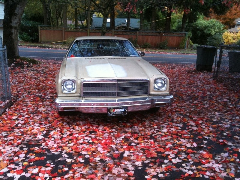 New paint is finally on my 74 Malibu Nov_3r11