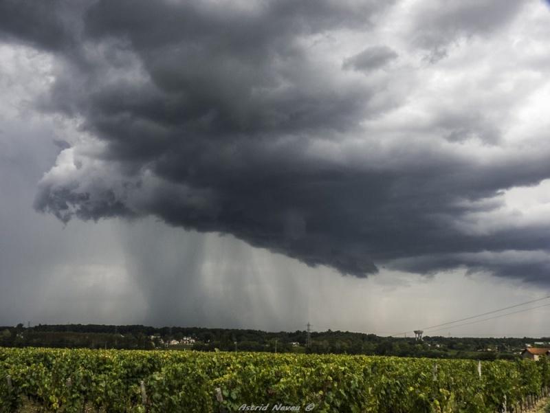 Orages d'automne (28/09/13, Sud Bordelais) P1110210