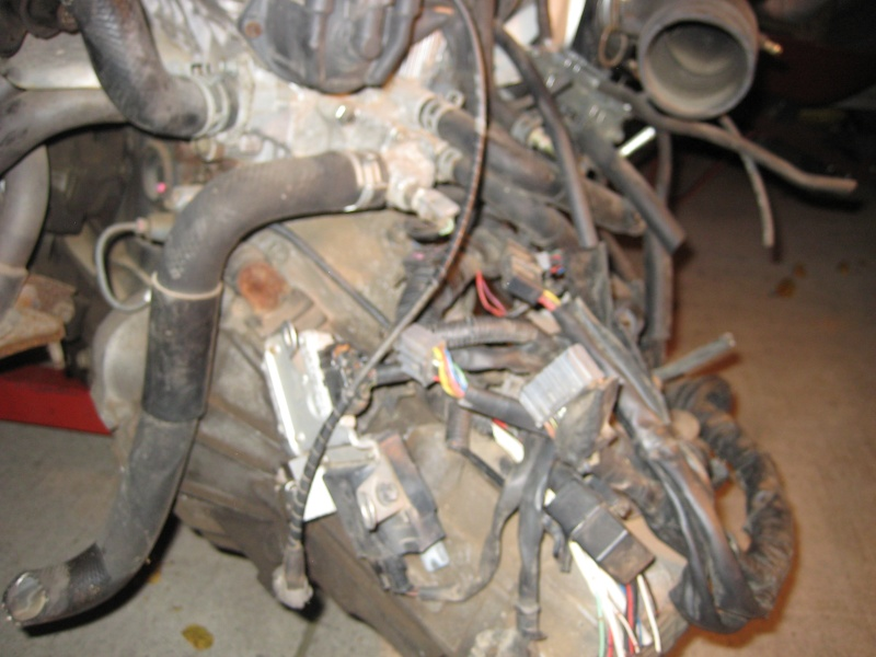 95 Corolla Build - Page 6 Img_1320