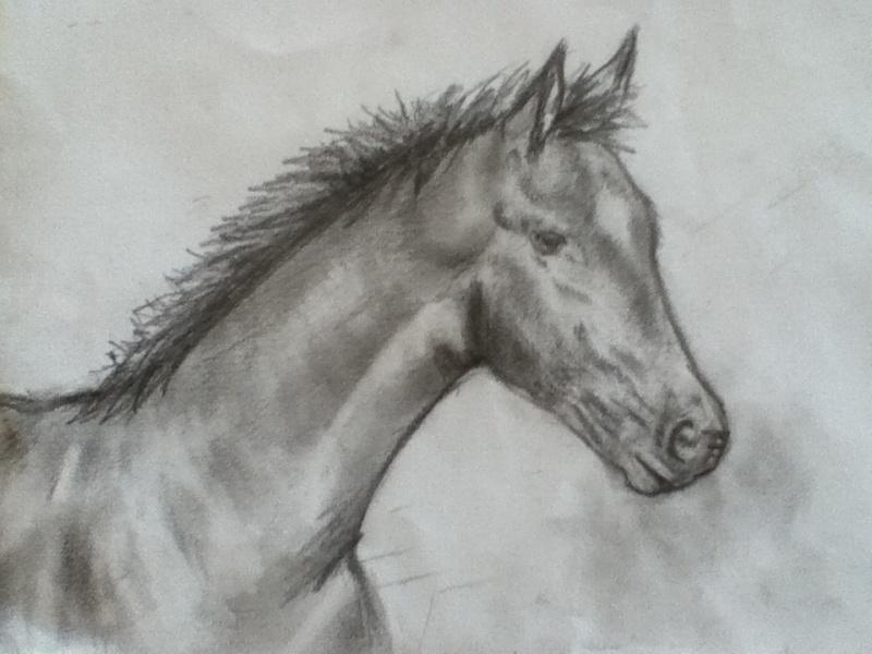 Mes dessins :) Img_3111