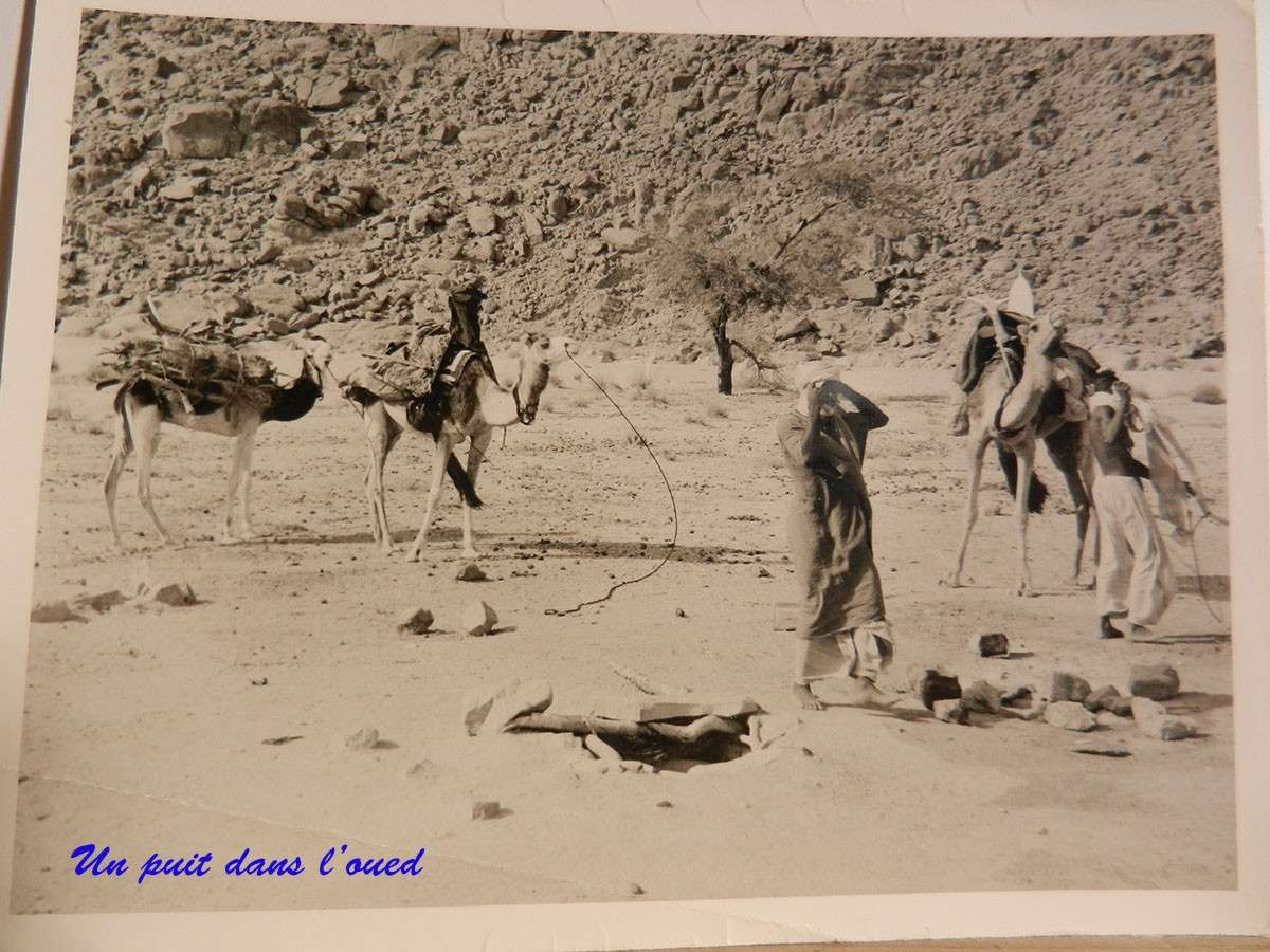 [Campagne] Marin des sables - Page 7 4_cemo24