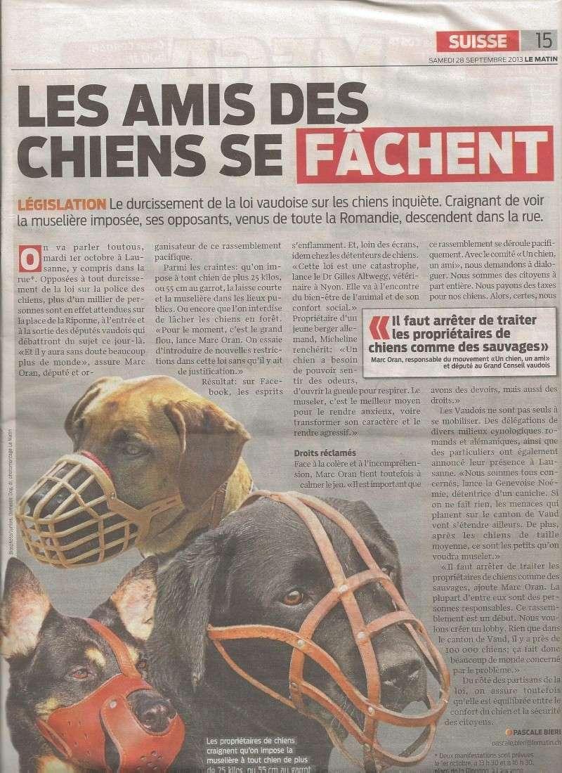 Manifestation contre la nouvelle loi drastique sur les chiens SUISSE - Page 2 Lemati10