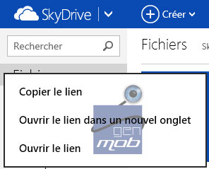 [TUTO] Utiliser Skydrive comme lecteur de disque Sky0210