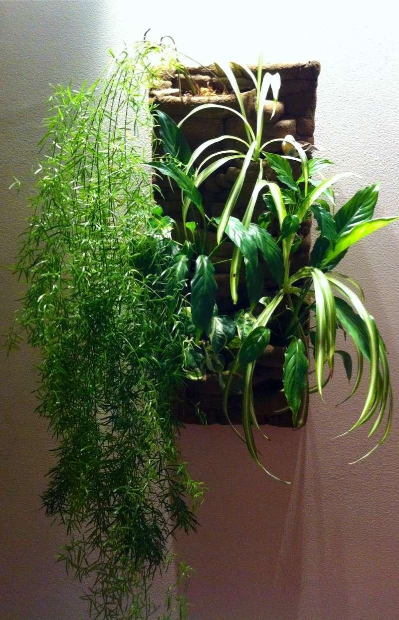tableau végétal  Tablea11
