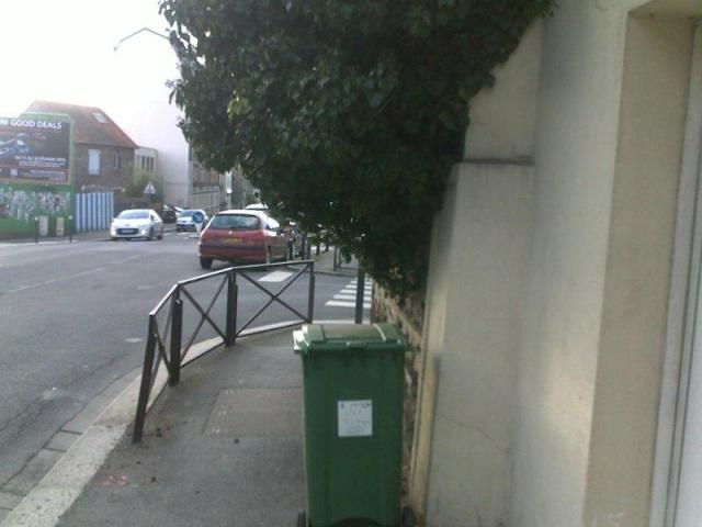 Le civisme, les poubelles et la végétation débordante Le20d110