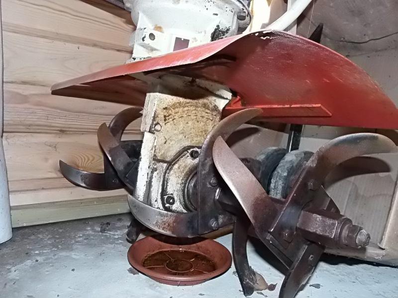 motobineuse P2190314