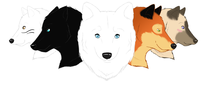 Siadven Pack