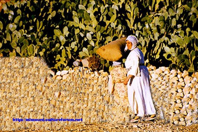 Qui a dit que Tamazighte la Marocaine n'est pas heureuse ? - Page 2 Mimoun13