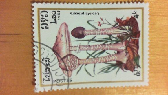 Von welchen Land kommen die Briefmarken??  1811